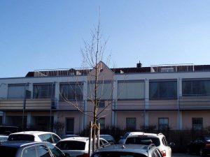 regent park appartements 1